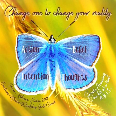 Best 25  Ragdolls for sale ideas on Pinterest | Ragdoll kittens ..